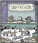 Dog Sniffathon