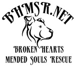 BHMSR Logo