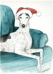 Greyhound on Chair