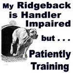 Rhodesian Ridgeback Agility