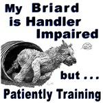 Briard Agility