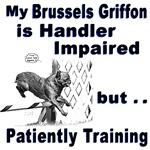 Brussels Griffon Agility