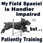Field Spaniel Agility