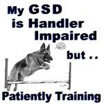 GSD Agility