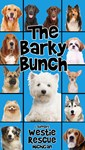The Barky Bunch