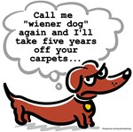 Mad Doxie Carpets