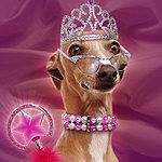 It's good to be Queen!