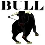 Los Toros, Bull