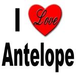 I Love Antelope
