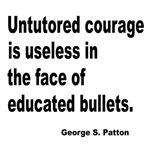 Untutored Courage is Useless