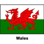 Wales Welsh Flag
