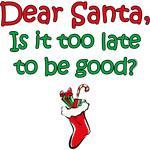 Santa Too Late
