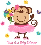 Monkey Big Sister