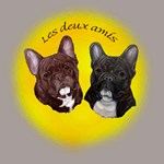 French Bulldog Pair