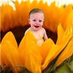 Precious Sunflower Baby Gifts