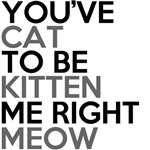 you've cat to be kitten right meow