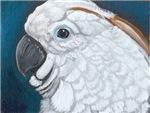 I'm So Pretty Parrot Cockatoo