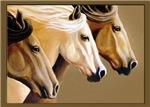 Wild Horses Trio