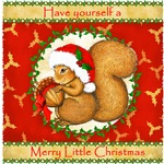 Little Squirrel Animals Christmas