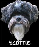 Scottie !
