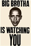 Big Brotha Is Watching You