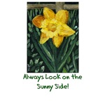 Sunny Daffodil