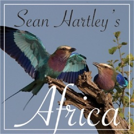 SEAN HARTLEY'S AFRICA