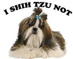I shih tzu not