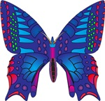 Fantasy Butterfly Products