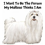 I Want To Be The Person My Maltese