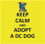 Keep Calm and Adopt a DC Dog