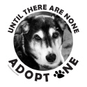 ADOPT A DOG T-SHIRTS AND GIFTS