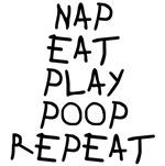 Nap Eat Play Poop Repeat