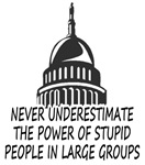 Congress Is Stupid