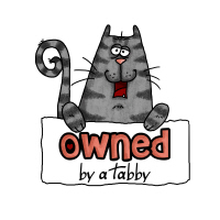 owned by a tabby