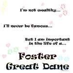 Foster Dane Life
