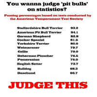 Pet's, BSL, Animal Rights