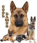 Cool Dawgs