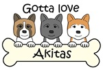 Three Akitas (Breed Color Varieties)
