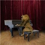 Regal Lion Photos