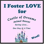 I Foster Love