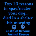 Top 10 Reason to Spay/neuter