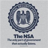 The NSA