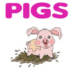 Cute Pig Designs