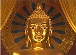 Giant Golden Budha Head