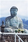 Giant Budha Meditating on Roof (V)
