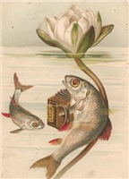 Accordian Fish