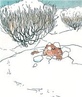 Prairie Dog in Winter