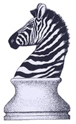 Zebra Knight Women's Clothing