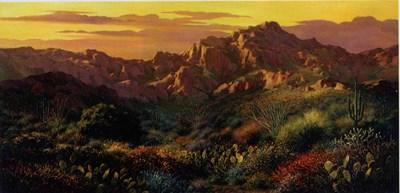 Arizona Desert canvas-reversed
